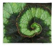 Begonia Leaf 2 Fleece Blanket