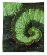 Begonia Leaf 2 Fleece Blanket