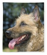 Belgian Laekenois Dog Fleece Blanket