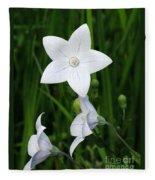 Bellflower - Campanula Carpatica Fleece Blanket