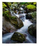 Below Rainier Fleece Blanket