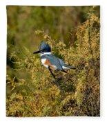 Belted Kingfisher Female Fleece Blanket