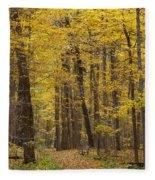 Bench In Fall Color Fleece Blanket