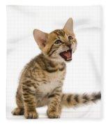 Bengal Kitten Fleece Blanket
