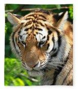 Bengal Tiger Portrait Fleece Blanket