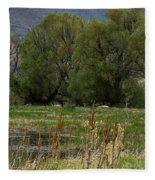 Benson Pond Fleece Blanket