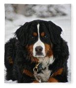 Bernese Mountain Dog Fleece Blanket