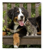 Bernese Mountain Puppy & Kitten Fleece Blanket