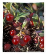 Berries Fleece Blanket