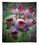 Berry Unripe Fleece Blanket