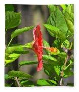 Best Close-up Green Hummingbird On Red Hibiscus Flower. Fleece Blanket