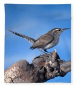 Bewicks Wren Fleece Blanket