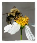 Big Bee Fleece Blanket