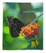 Big Boy Butterfly Fleece Blanket