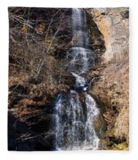 Big Bradley Falls 2 Fleece Blanket