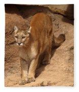 Big Cats Fleece Blanket