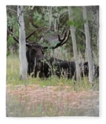 Big Daddy The Moose 1 Fleece Blanket