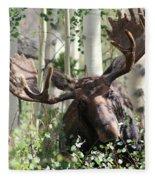 Big Daddy The Moose 3 Fleece Blanket