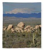 Big Granite Boulder In The Desert Fleece Blanket
