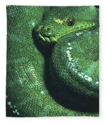 Big Green Eating Machine Fleece Blanket