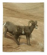 Big Horn Sheep Fleece Blanket