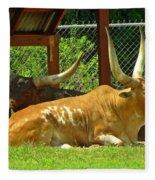 Big Horns Fleece Blanket