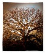 Big Tree Fleece Blanket