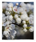Billows Of Fluffy White Bradford Pear Blossoms Fleece Blanket