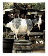 Billy Goat Big Thunder Ranch Frontierland Disneyland Fleece Blanket