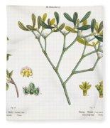 Birch And Mistletoe Fleece Blanket