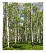 Birch Tree Grove In Summer Fleece Blanket