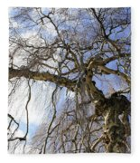 Birch Tree  Fleece Blanket