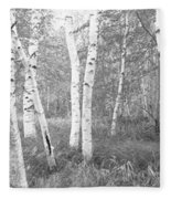 Birch Trees In A Forest, Acadia Fleece Blanket