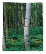 Birch Trees In A Forest Fleece Blanket