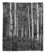 Birch Trees No.0148 Fleece Blanket