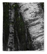 Birches Fleece Blanket