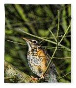 Bird - Baby Robin Fleece Blanket