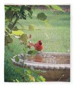 Bird Bath Fleece Blanket