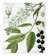Bird Cherry Cerasus Padus Or Prunus Padus Fleece Blanket