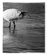 Bird Drinking Fleece Blanket
