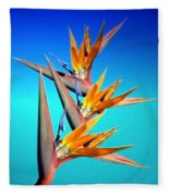 Bird Of Paradise 2013 Fleece Blanket