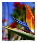 Bird Of Paradise Open For All To See Fleece Blanket