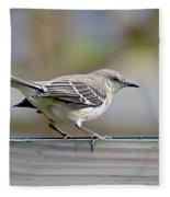 Bird On The Fence Fleece Blanket