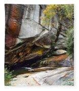Bird Rock Waterfall Fleece Blanket