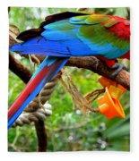 Birds Eye Fleece Blanket