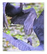 Birds - Fighting - Herons Fleece Blanket
