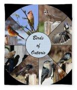 Birds Of Ontario Fleece Blanket