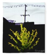 Birds On A Wire In Cooper Young Fleece Blanket