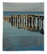 Birds On Old Dock On The Bay Fleece Blanket