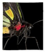 Birdwing Butterfly Fleece Blanket